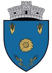 Primaria Galbenu